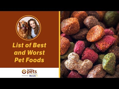 Dr. Becker Shares Her Updated List of Best and Worst Pet Foods