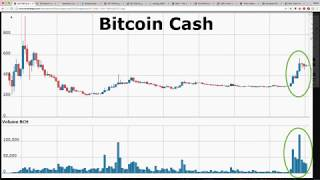 Bitcoin Cash DOUBLES in 2 Days! Bitcoin Could Crash by 50% VERY SOON: Goldman