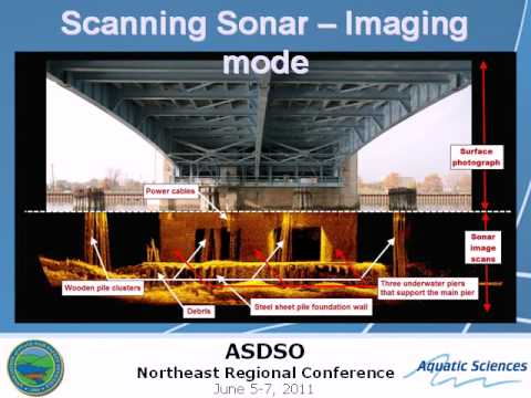 Underwater Surveys using Sonar Imaging