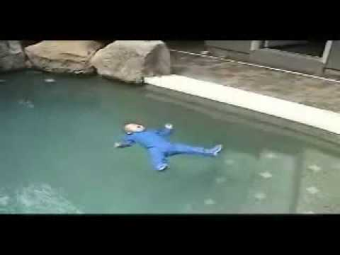 Baby Swimming Survival Video Youtube