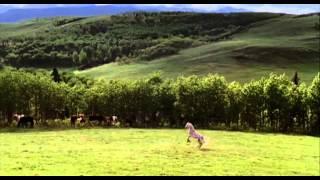 Heartland (CA) - Saison 2 - Episode 1 Extrait