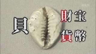 第26回 「石のお金、貝のお金」