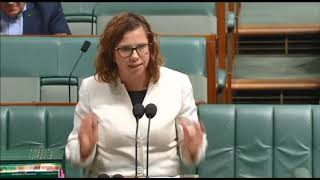 Parliament - 29 November 2018 - Women