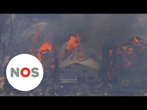 BOSBRANDEN:  Het vuur in Californië grijpt razendsnel om zich heen
