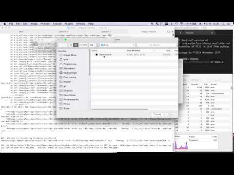 Automate fiji tasks with python