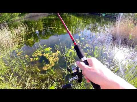 ловля на технопланктон видео