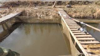 рыбалка в Челябинской области (Питомник)(, 2014-05-03T11:29:10.000Z)