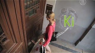 «Умные» дверные замки без ключей набирают популярность (новости)(, 2015-07-16T16:17:46.000Z)