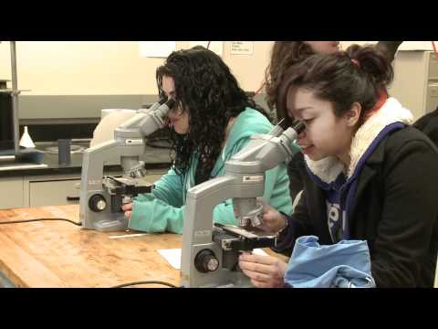 News@Northwestern - Engineering Career Day for Girls