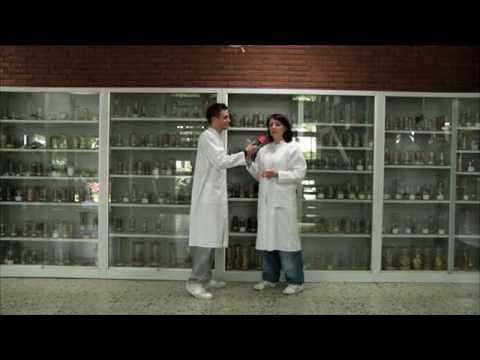 Das Pharmaziestudium - Die Tour