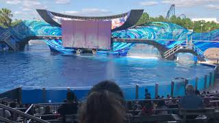 Sea World Orlando | One Ocean | May 2018