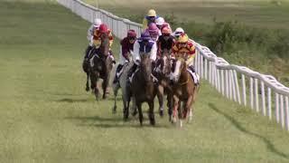 Vidéo de la course PMU PRIX DE L'EPIPHANIE