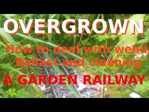 Overgrown Garden Railway. How to deal with weed, ballast and cleaning.