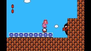 Super Mario Bros 2 - 2nd Run - Super Mario Bros 2 2nd run - standing on Dodo