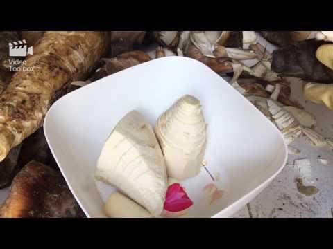 Cách làm măng tươi trước khi ăn | Phượng Phạm | Thiên đường ẩm thực