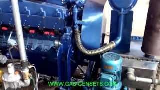 100kW biogas generator Steyr