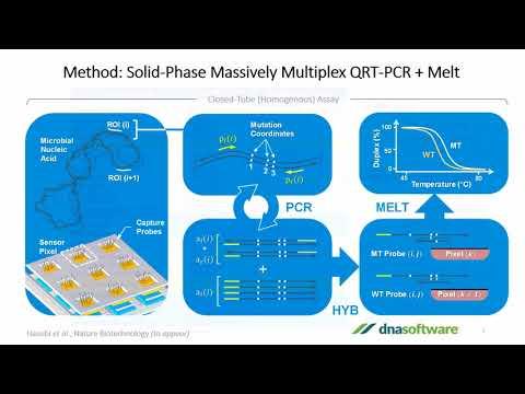 Multiplex PCR Assay Design Made Easy