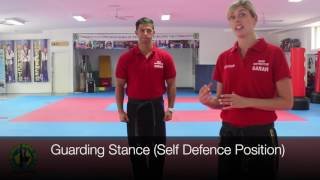 Instructor Tip- Stances used at AMA