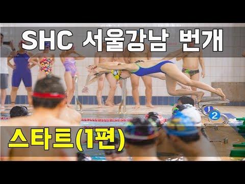 SHC 수영_ 스타트 배우기(강남 번개)