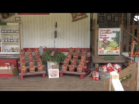 Lawson Peach Shed Offers Farm Fresh Tastes Of Georgia