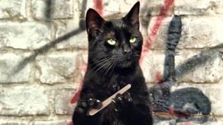 Что было бы ,если бы у кошек был большой палец?...