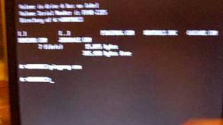 Ping-Pong.exe DOS Virus