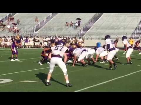 Greyhounds score on Bulldogs