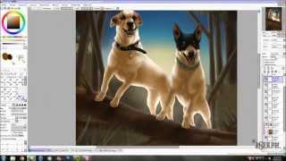 Bindii & Roxy // Commission