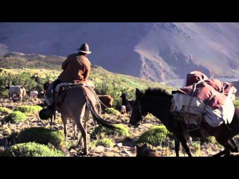 Random Movie Pick - Arreo (trailer) YouTube Trailer