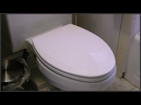 Elongated Toilet Seat Replacement