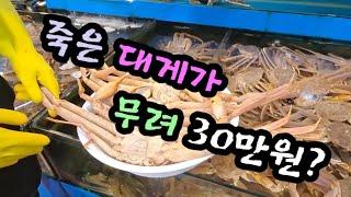 구리 농수산물 어시장. 경기 북부권 최대 어시장 시세 …