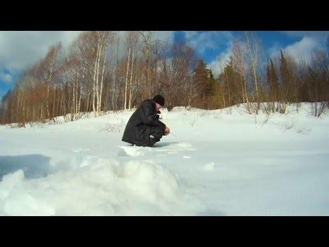Ловля сопы зимой на вятке