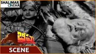 Bheeshma Movie    Sentiment About NTR Injured By Anjali Devi    NTR, Anjali Devi    Shalimarcinema