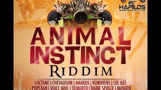 Ninja Kid - Wine Pon Dis | Animal Instinct Riddim | Janaury 2013 | Follow @YoungNotnice