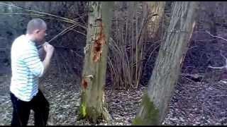 Drwal- wycinki lasów(Feniks w pracy)