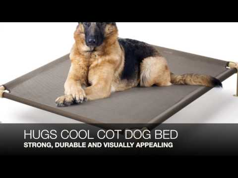 what-is-the-best-dog-bed-for-chewers?