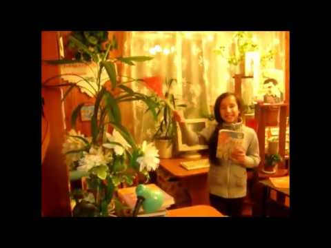 Изображение предпросмотра прочтения – ГульчираХуснутдинова читает произведение «Майская песенка» В.В.Маяковского