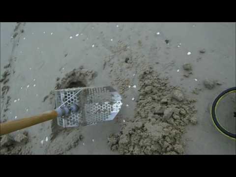 Beach Metal Detecting 6/10/17
