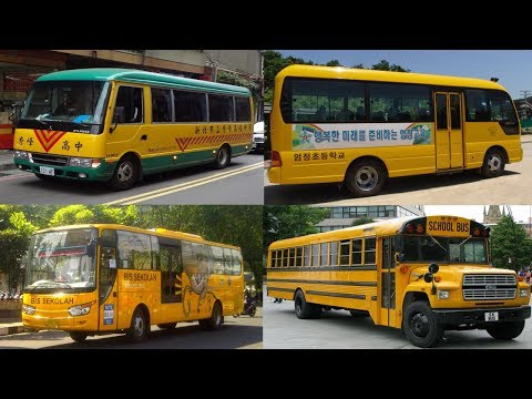 Transport and Vehicles for Kids Educational Videos for Children Learn School Bus Around the World
