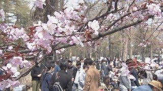 円山公園が花見ジンギスカン「禁止」…困惑広がる【HTBニュース】