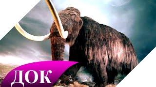 Ископаемые животные: Мамонт - воскрешение из мертвых. Документальный фильм