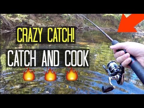 It Took Me YEARS To Finally Catch This Fish!! (Catch & Cook!)