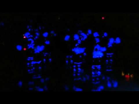 Berean Baptist Academy Blackout Night - 2016 [HD]