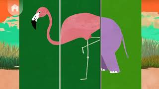 Fun Animal Match Up Play  - Educational Games Videos - Games for Kids