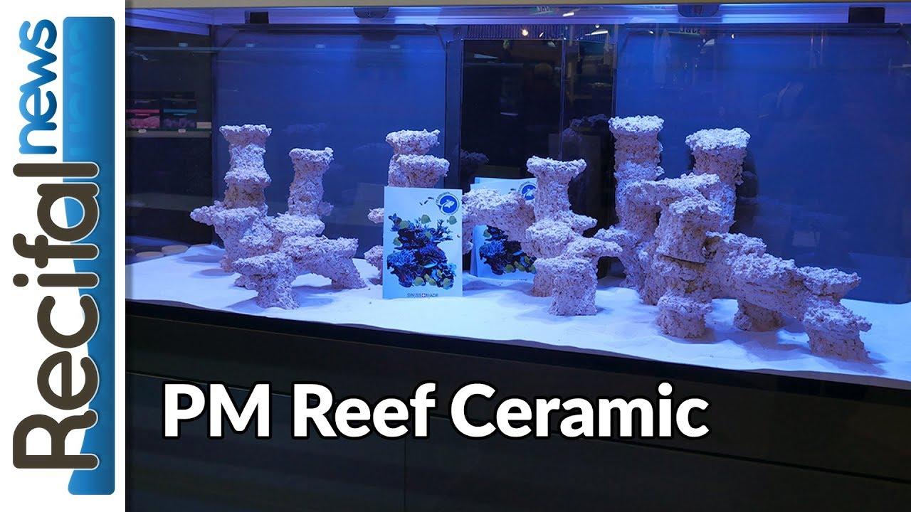 Fisch Und Reptil 2017 Pm Reef Ceramic Décor Aquarium Récifal