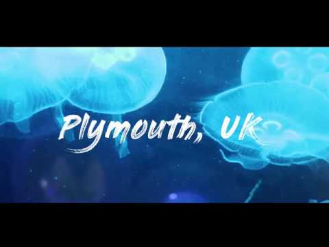 WOW air travel guide application // Plymouth, UK