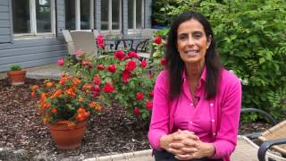Der erste Termin beim Frauenarzt - Dr. Verena Breitenbach