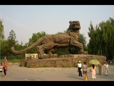 Top 10 Largest Zoo in the World  Visiting the Most Interesting Animal Attractions