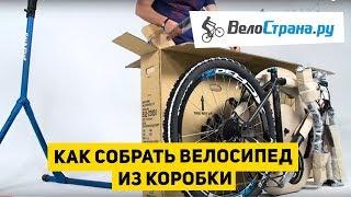 Как собрать велосипед из коробки(Инструкция по сборке велосипеда из коробки. Мы расскажем, как собрать велосипед самому, что для этого необх..., 2016-02-05T17:04:03.000Z)