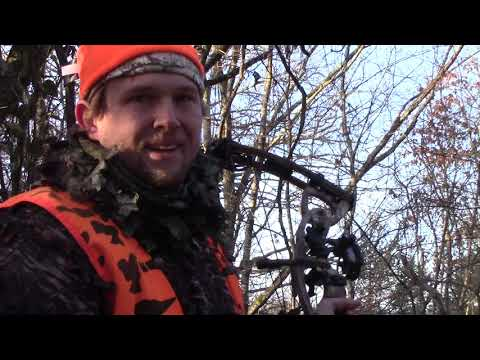 East Tennessee Public Land Bow Hunting In Late Season